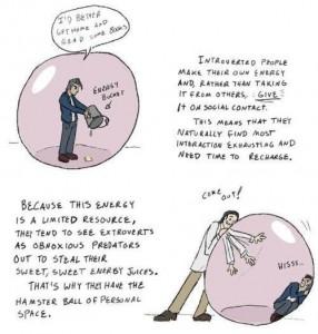 Introvert-Hamsterball